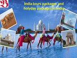 Domestic Tour Packages and India tours packages