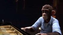 3D Animation Short Film - Monkey Symphony - Full Animated Movies HD