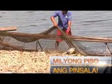 "Reporter's Notebook: Nilasong lawa? ""THE TAAL LAKE FISH KILL INVESTIGATION"""
