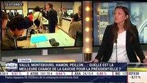 """""""Je soutiens Vincent Peillon parce qu'après le renoncement de François Hollande, il n'y avait plus de candidat social-démocrate"""", Karine Berger – 12/01"""