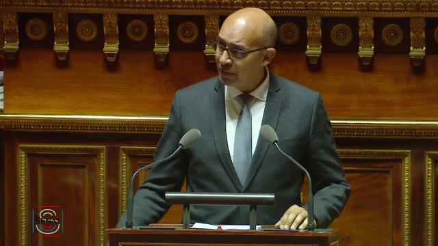 Discours d'Harlem Désir au Sénat sur le fonctionnement de la zone euro