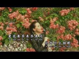 [Josephine Chee 徐玉珠] 红睡莲 -- 那些年代的经典金曲 (Official MV)