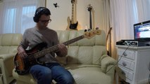 Red Hot Chili Peppers - The Longest Wave [Bass Cover]