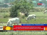 BT: 6-anyos na bata sa Ilocos Norte,   patay nang malunod sa ilog