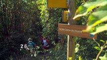 Le Pays Voironnais A pied, Tour du lac de Paladru, Trail, Marche nordique, Balade avec les lamas et Cani-rando