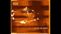 Muse - Plug In Baby, Pinkpop Festival, 06/12/2000