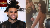 The Weeknd Amazed By Selena Gomez's Sizzling Thong Photo   Hollywood Asia