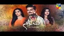 Sanam | Episode 20 | Promo | Full HD Video | HUM TV Drama | 16 January 2017