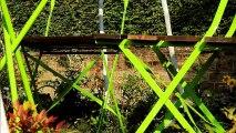Επαγγελματικά Έπιπλα Ιωάννινα 2155156713 professional furniture Ioannina Επαγγελματικά Τραπέζια Ιωάννινα Επαγγελματικές καρέκλες Ιωάννινα Επαγγελματικοί καναπέδες Ιωάννινα professional tables Ioannina professional chairs Ioannina professional sofas