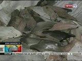 BP: Saku-sakong karne ng thresher shark at butanding, nasamsam sa Cebu