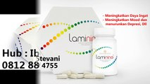 [ WA 0812-8899-4755 ] Harga Laminine Herbal,Beli Laminine Jakarta,Harga Laminine