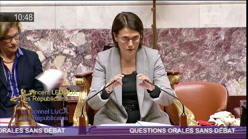 Lionnel Luca interroge le Ministre sur le projet de la prison de St Laurent du Var - QOSD 17.01.17