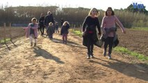 Les jardins familiaux débarquent à Porquerolles