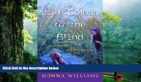 Read Book Like Colour to the Blind: Soul Searching and Soul Finding Donna Williams  For Kindle