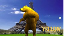 3D Injection Bear Colours Songs | Colours Song For Children | Colours Rhymes For Toddlers