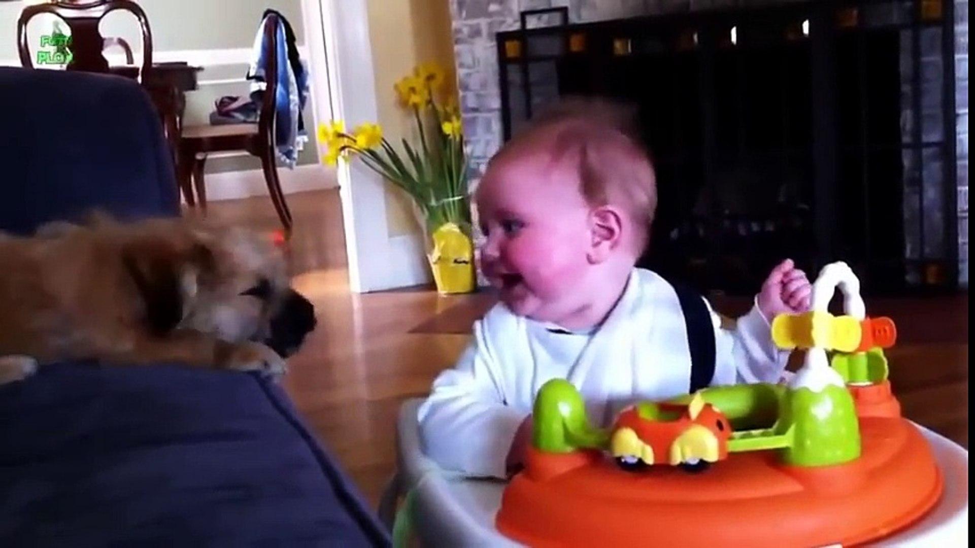 Köpekler ve Bebekler Komedi - Köpeklerle Oyun