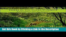 Read Ebook [PDF] Tigers in the Emerald Forest: Ranthambhore after the Monsoon Epub Online