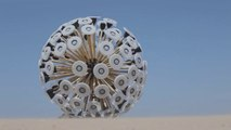 Cet engin n'est pas une œuvre d'art, mais une machine qui détecte et détruit les mines anti personnelles