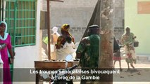 Les troupes sénégalaises bivouaquent à l'orée de la Gambie