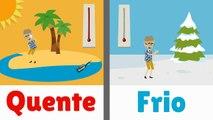 Opposites in PORTUGUESE | Opposite Words | Portuguese Language | Learn Portuguese | Brazil Language