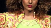 Kangana Ranaut Shahid Kapoor Hot Lovemaking Scene is Too Hot To Handle