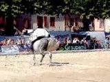 spectacle equestre partie 3