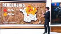 Mauvaises récoltes  - 4 milliards d'euros de perte pour les céréaliers-3Z3KJEws8jM