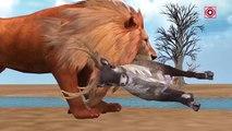 African Lion Hunting Deer Animal Videos for Children   Lion Vs Deer Animal  Attacks Cartoon Video
