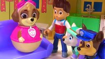 Paw Patrol Skye is Pregnant, Needs a Doctor and Has Lots of Puppies | Fizzy Toy Show