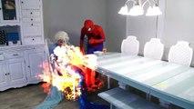 siêu nhân nhện và nữ hoàng băng giá elsa | Hulk tranh người yêu với spiderman