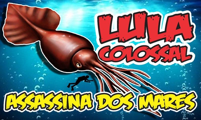 LULA COLOSSAL - CRIATURA ASSUSTADORA E MORTAL  /  Colossal Squid