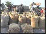 Agriculture/ du ministre de l'agriculture Sangafowa  va au contact des agriculteurs dès demain