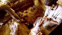 Enquêtes Archéologiques: Hegra, Sur Les Traces Des Nabatéens