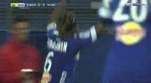 SC Bastia 1-1 Stade Malherbe Caen - Le Résumé Du Match HD (28.01.2017) - Ligue 1