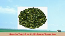 Sencha Tea 16 oz 1 lb bag of loose tea 9dc97906