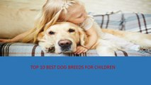 Top 10 Best Dog Breeds for Children| Top 10 Best Dog Breeds for Kids