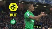 But Kévin MONNET-PAQUET (55ème) / Toulouse FC - AS Saint-Etienne - (0-3) - (TFC-ASSE) / 2016-17