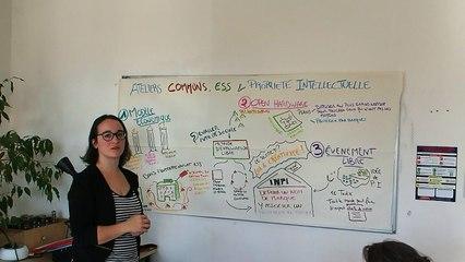 Communs, ESS et Propriété Intellectuelle - Facilitation infographique de Fanny Monod