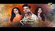 Sanam Episode 22 Promo Full HD HUM TV Drama 30 January 2017