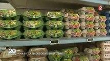 Les œufs issus de poules enfermées dans cages sont dans le collimateur de la grande distribution !