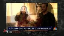 Divorce En Alaska, le juge peut désormais décider de la garde des animaux