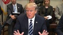 Donald Trump rencontre les PDG d'entreprises pharmaceutiques