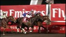 2-Dubaï : la capitale du sport de la péninsule arabique !