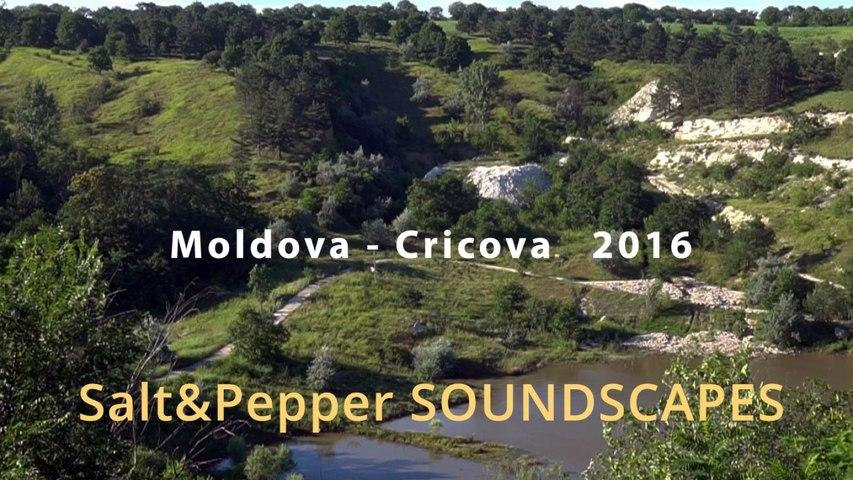 Moldova III - Cricova