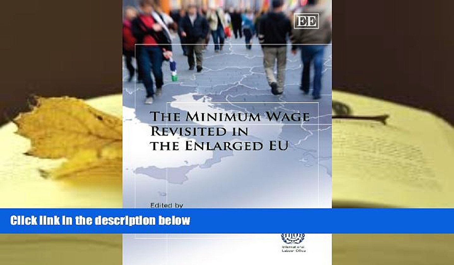 READ book The Minimum Wage Revisited in the Enlarged EU Daniel Vaughan-Whitehead Full Book