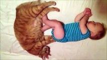 Petit massage des fesses pour dormir. Chat et bébé adorables