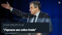 Affaire Penelope Fillon : François Fillon dénonce une «entreprise de démolition»