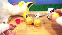 Crazy Chicken Surprise Eggs - Fun On The Farm!