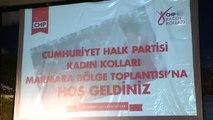 """CHP Kadın Kolları Başkanı Köse: """"Bu Tartışmayı Mevcut Cumhurbaşkanı Bağlamında Yapmak Yanlış Olur"""""""