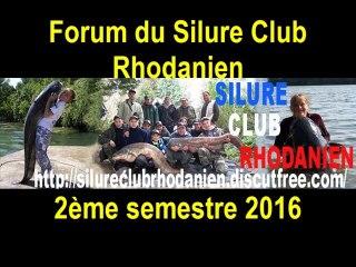 Poissons du forum du Silure Club Rhodanien